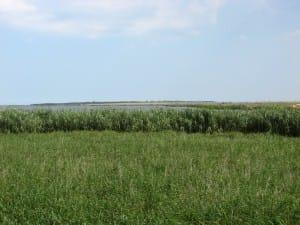 Дуранкулашкото езеро