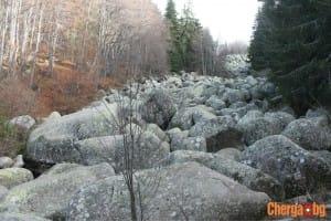 stone river_8636_cherga.bg