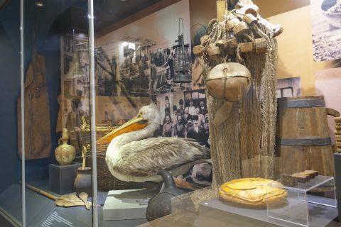 Тутракан – град на рибари и воинска слава
